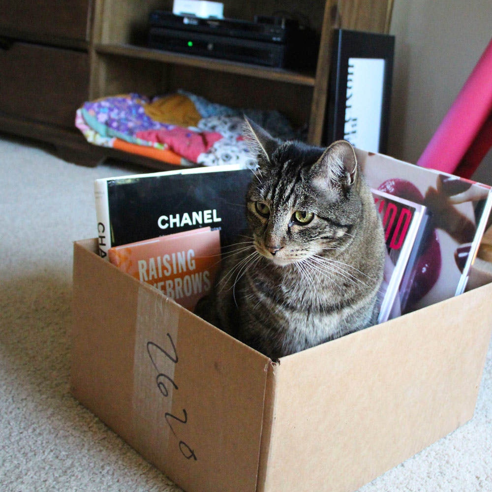 13-tabs-cat-box-makeup-books