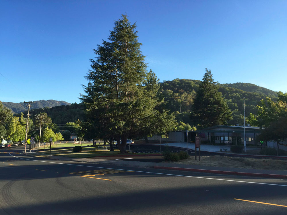 16-novato-summer-walk