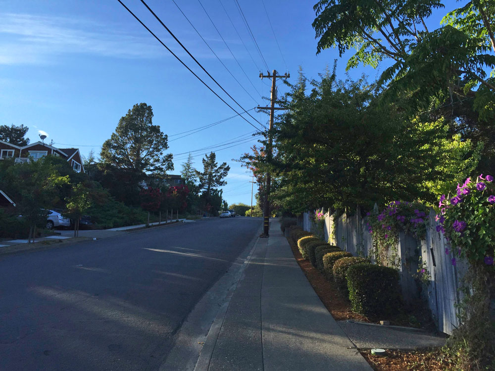 3-novato-summer-walk