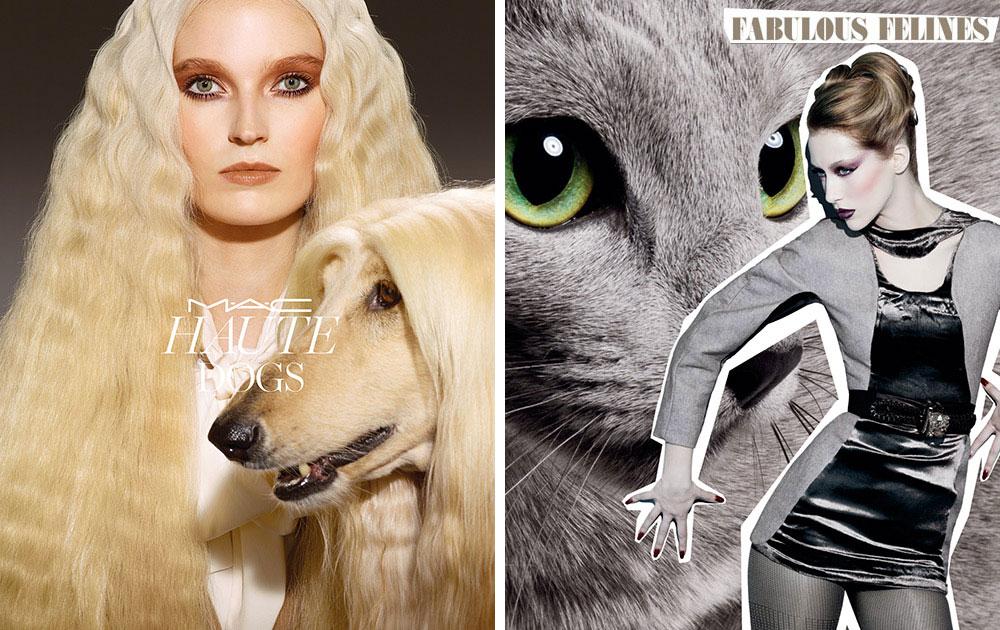 mac-haute-dogs-fabulous-felines