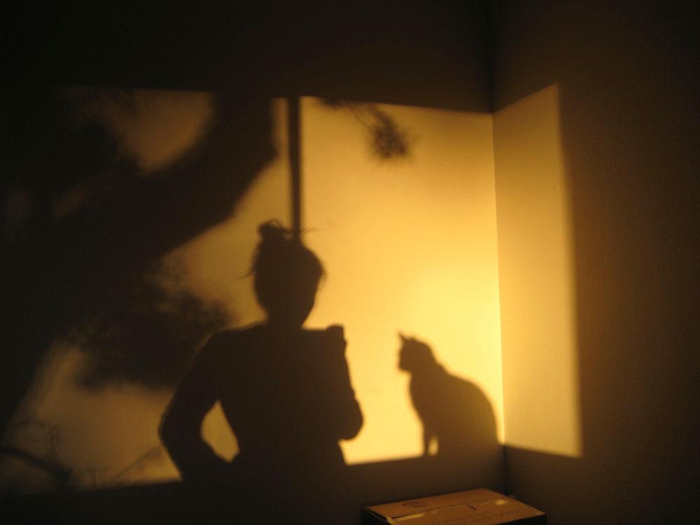 11-tabs-the-cat-memories