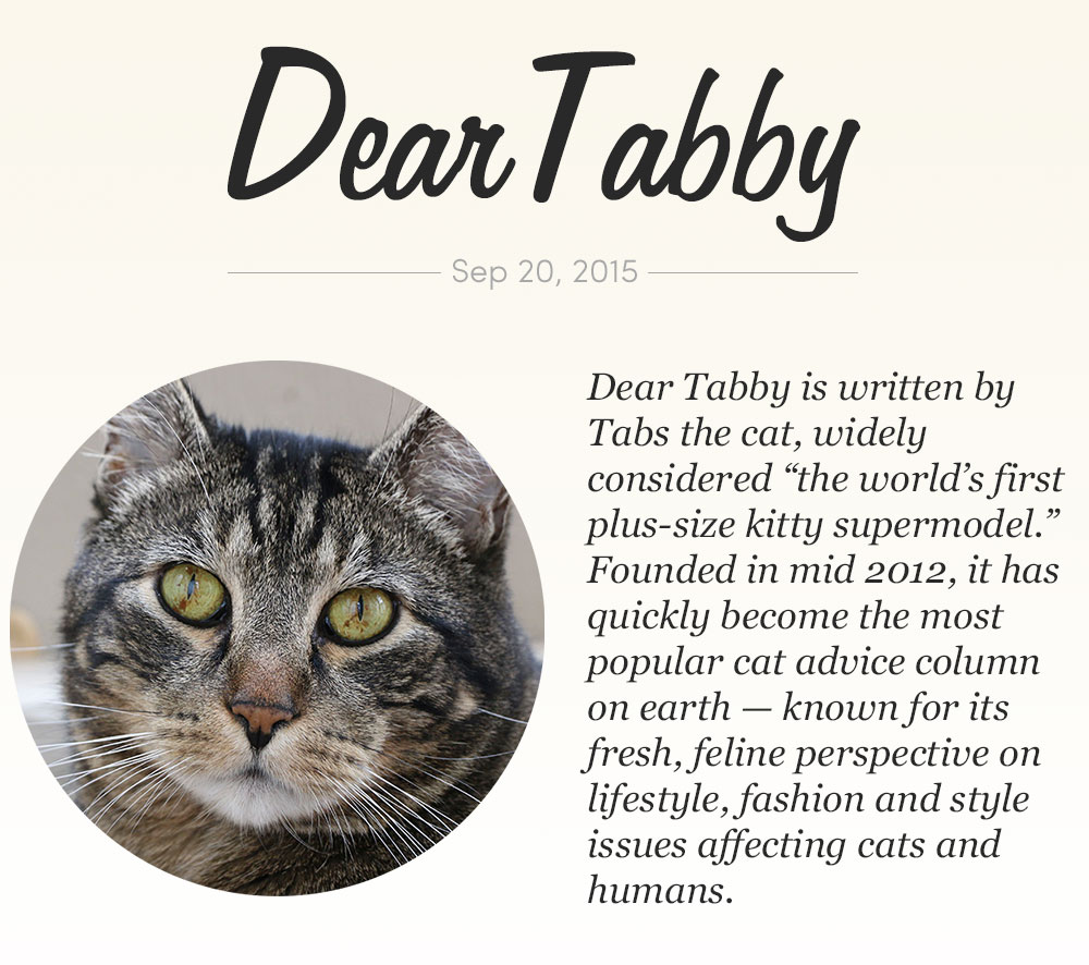 dear-tabby-heading-sep-2015
