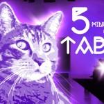 5-minutes-tabs-cat