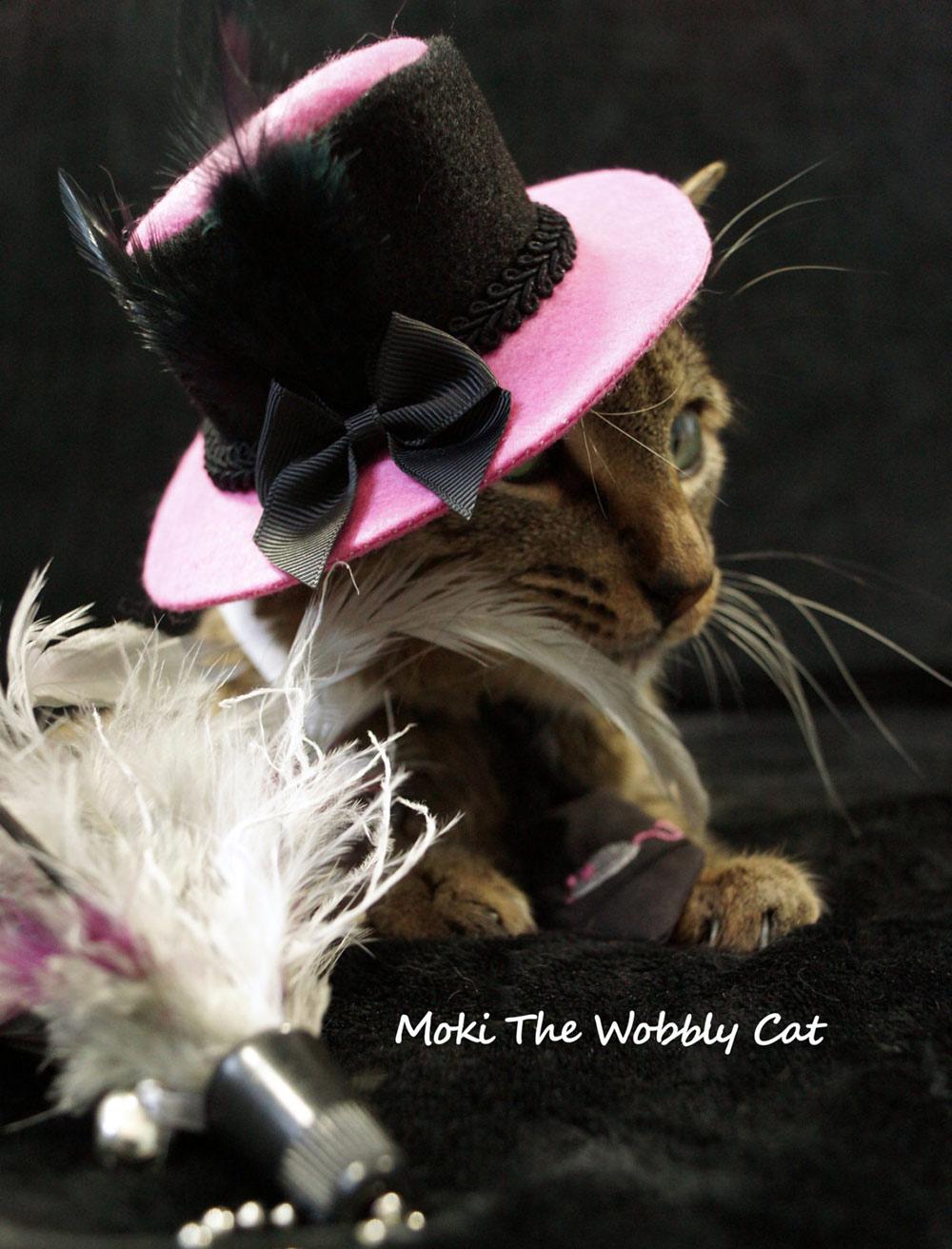 pink-black-cat-hat