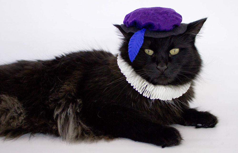 Renaissance cat costume