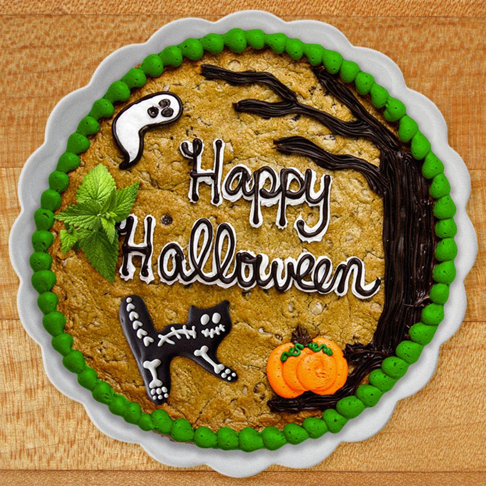 Catnip cookie cake