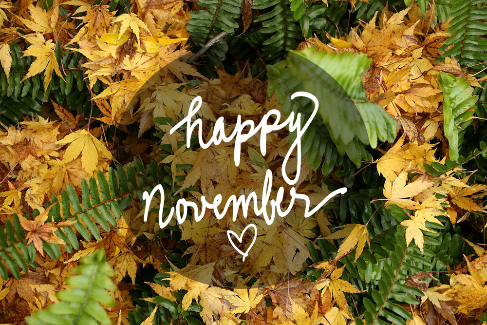 happy-november-2015-1