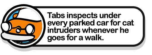 tabs-inspects-cars-popup