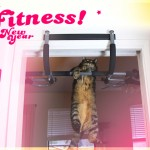 Workin' on my fitness with kitty pull-ups...