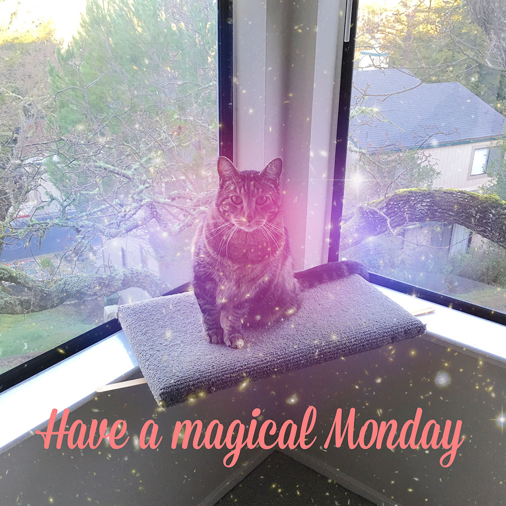tabs-magical-monday