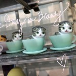 teacup-kitties-day-in-beauty