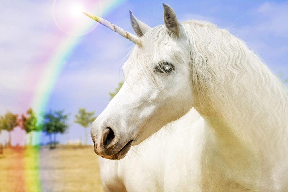 rare-unicorn