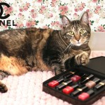 tabs-chanel-nail-lacquer-modeling-2016