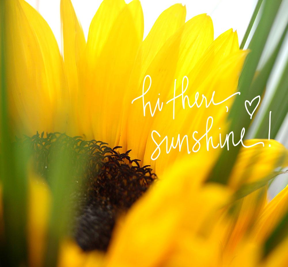 041716-monday-poll-sunflowers-final