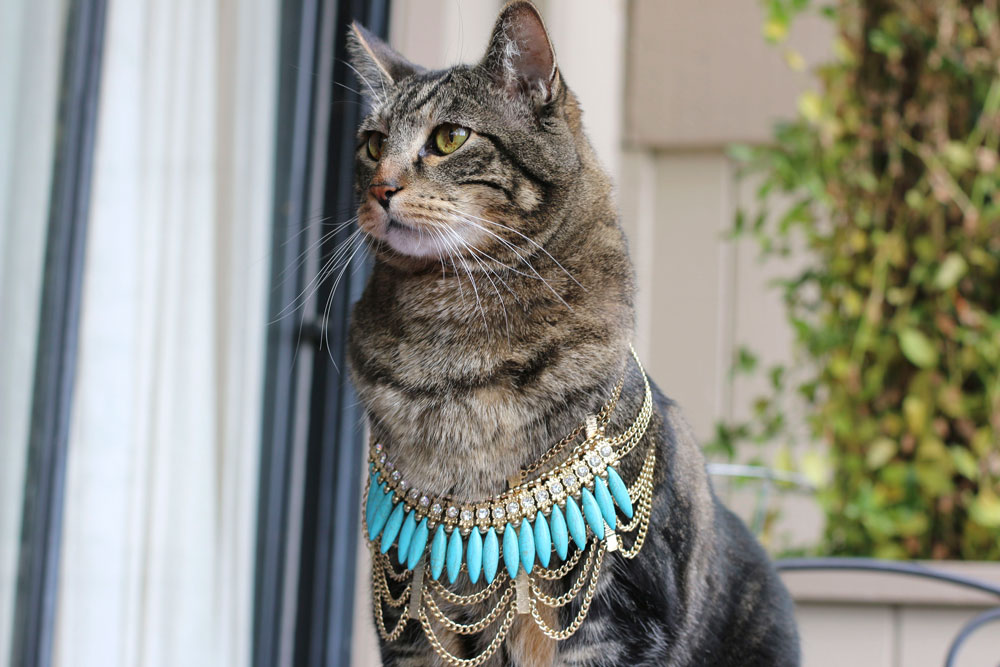 tabs-egyptian-mau-necklace