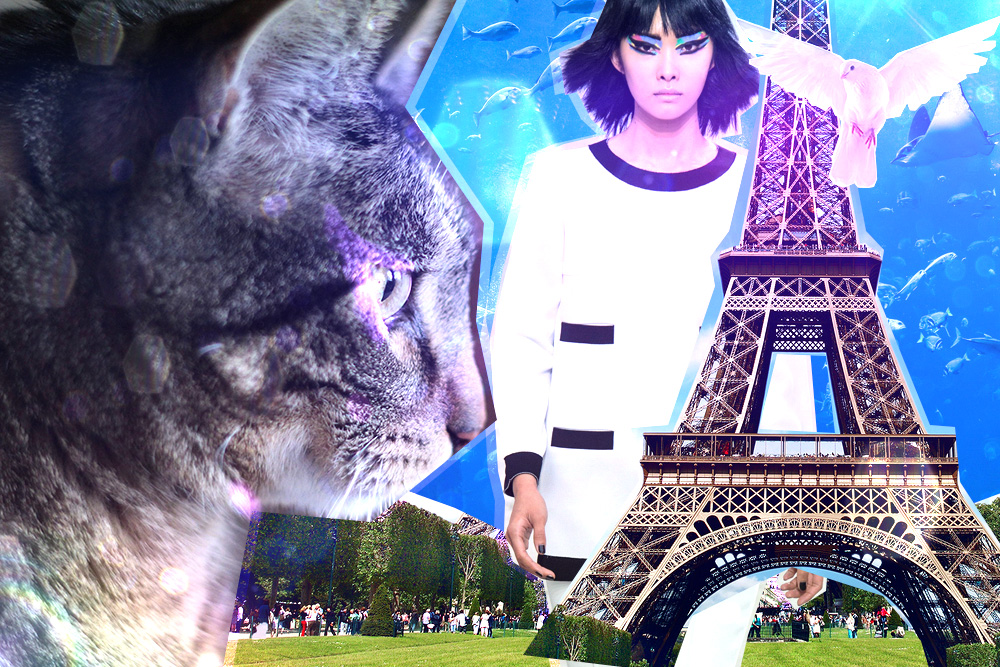 tabs-cat-model-paris-edgy