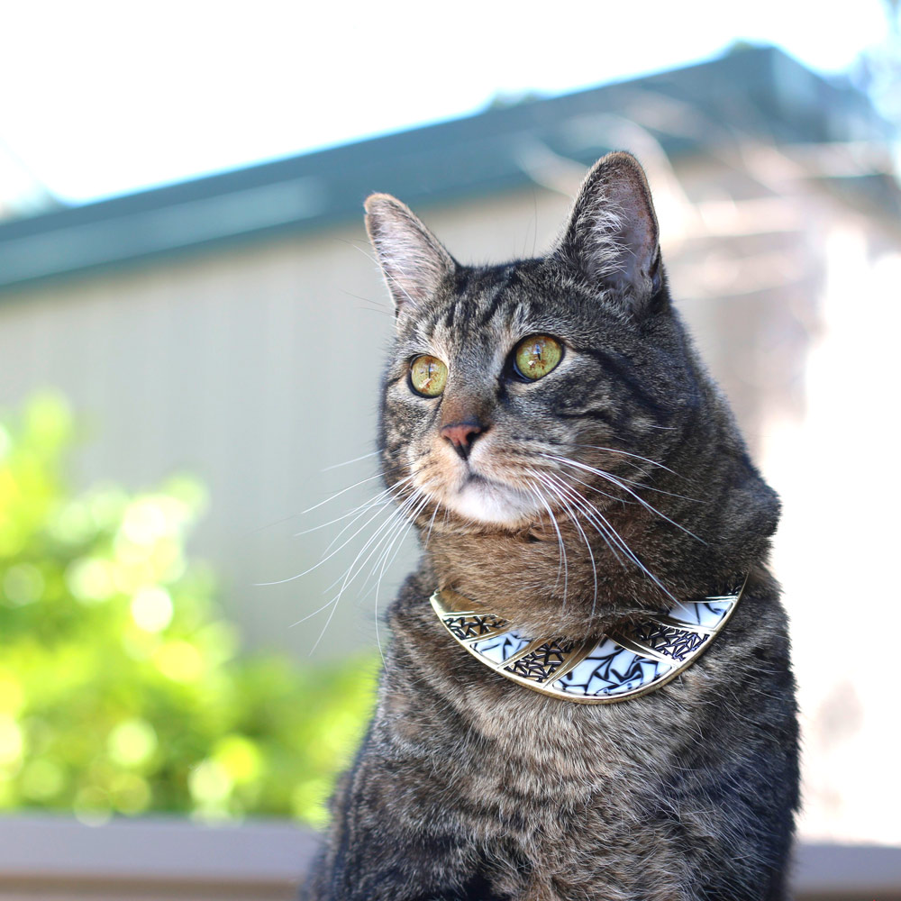 tabs-cat-jewelry-summer-2016-2