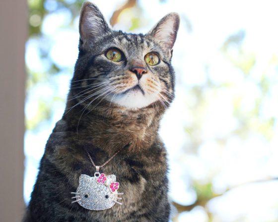 tabs-cat-jewelry-summer-2016-4