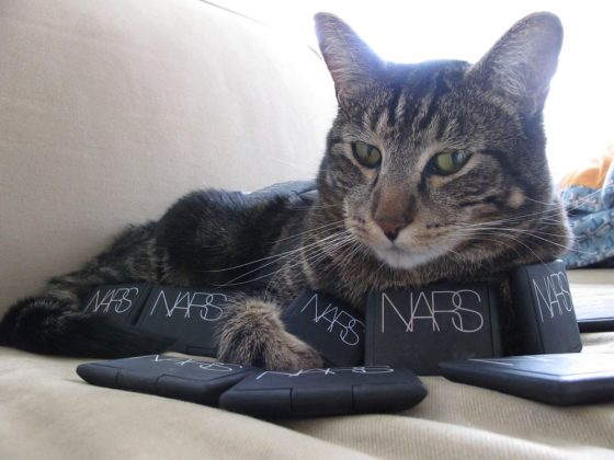 tabs-cat-kitty-model-2009-3