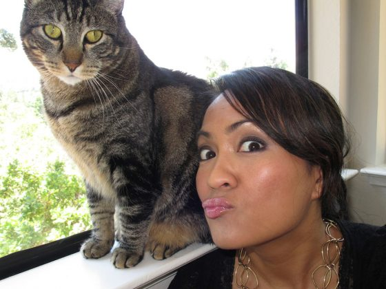 tabs-cat-kitty-model-2009-4