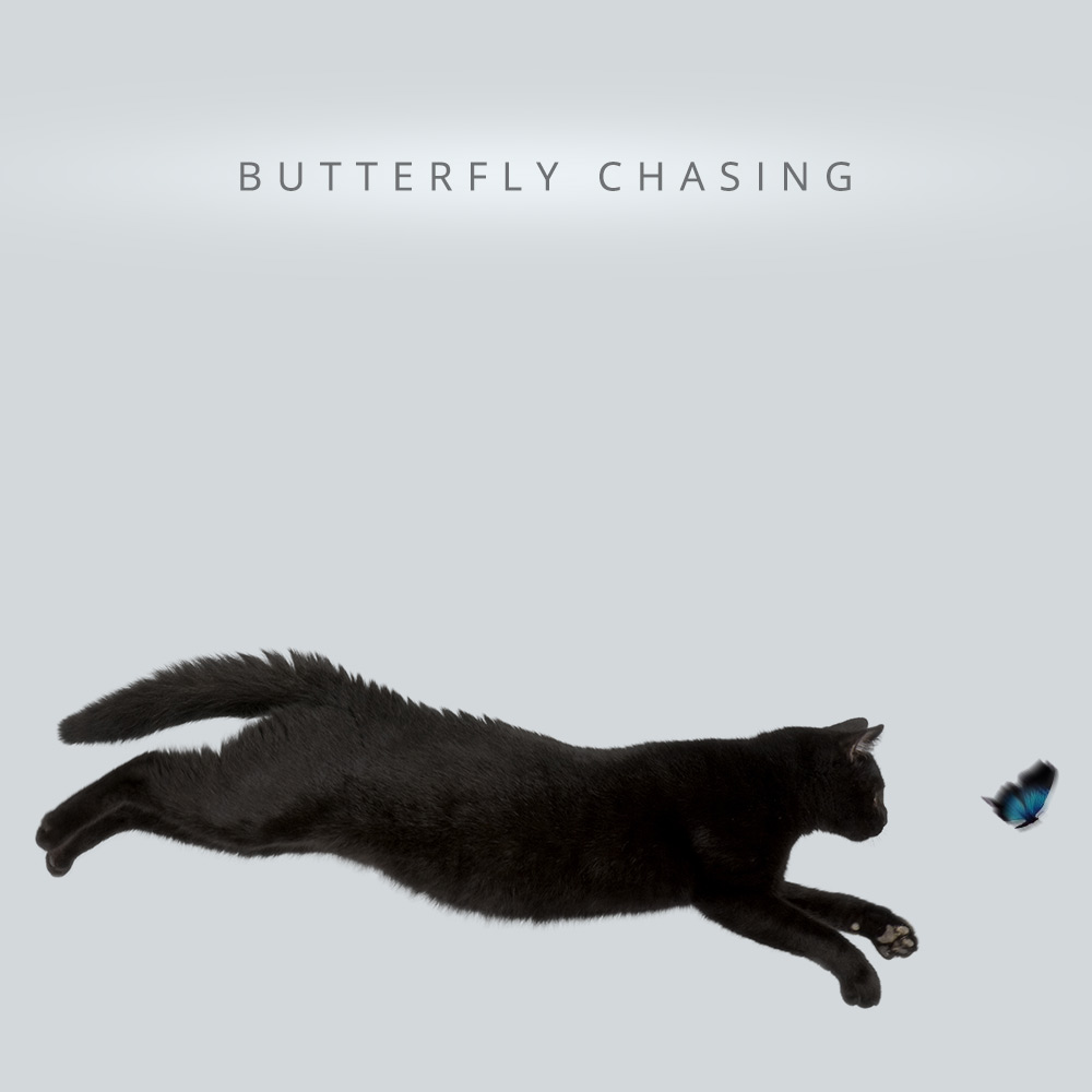 tabs-cat-olympics-butterfly-chasing