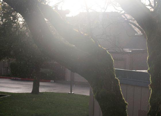 rain in the sunshine