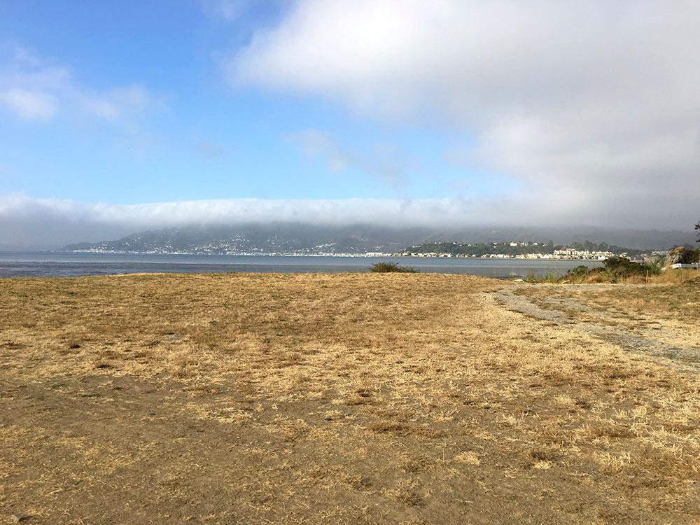 Blackie's Pasture in Tiburon, California