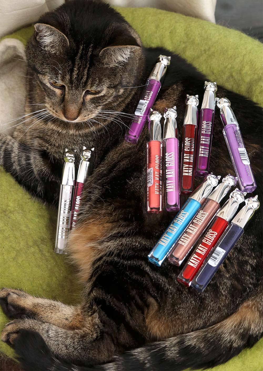 all 12 shades of katy kat gloss