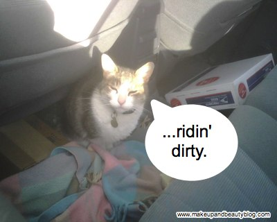 meow-mix-ridin-dirty-2-1.jpg