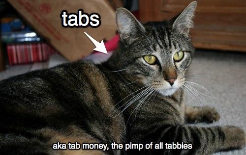 makeup and beauty blog tag tab money