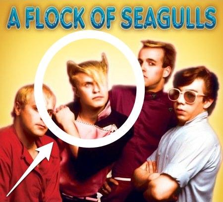flock-of-seagulls-1
