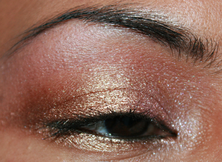 mac-cosmetics-woodwinked-fotd-052208-eye-2