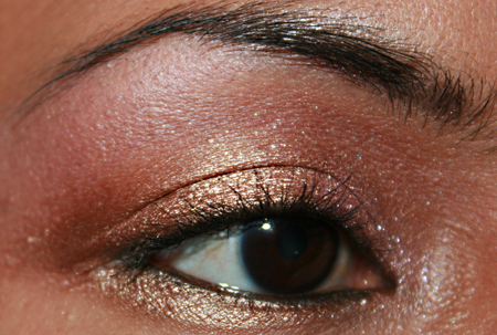 mac-cosmetics-woodwinked-fotd-052208-eye-3