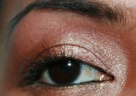 mac-cosmetics-woodwinked-fotd-052208-eye-4