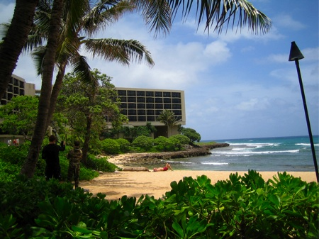makeup-and-beauty-blog-turtle-bay-hotel-2