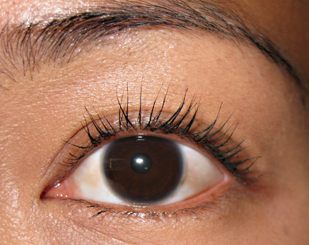 stila lash visor waterproof mascara review