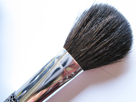 sonia kashuk hidden treasure brush set face blush brush
