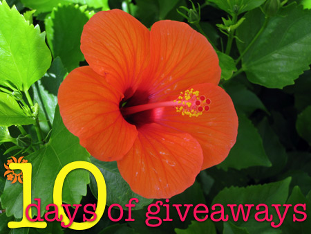 makeup-and-beauty-blog-10-days-of-giveaways-orange-hibiscus-1