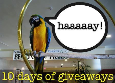 makeup-and-beauty-blog-10-days-of-giveaways-parrot