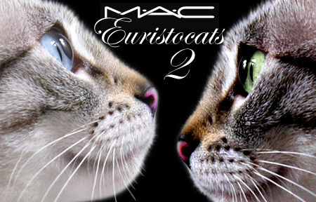 Tabs and MAC Euristocats 2