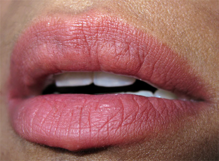 urban decay fall 2009 wallflower lip swatch final
