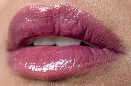 mac-makeup-art-cosmetics-hold-the-pose-lip-look-without-flash