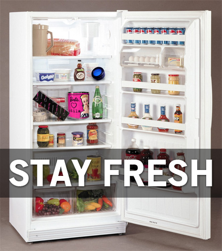 Use a refrigerator to keep makeup fresh longer