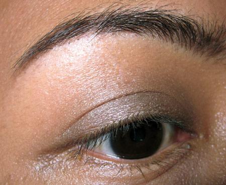 Mac Brown Down Eyeshadow