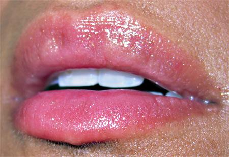 Bobbi Brown Earth Metal Palette Swatches Rose Garden Creamy Lip Color 2
