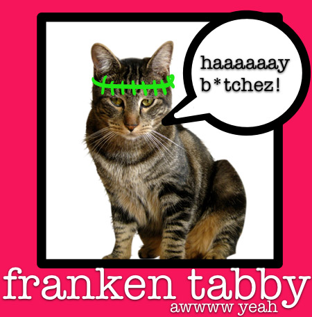 franken-tabby