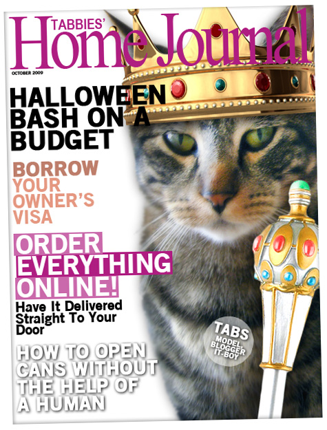 On the cover of Tabbies' Home Journal
