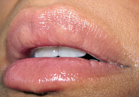 Sonia-Kashuk-Classic-Palette-Holiday-2009-lipgloss
