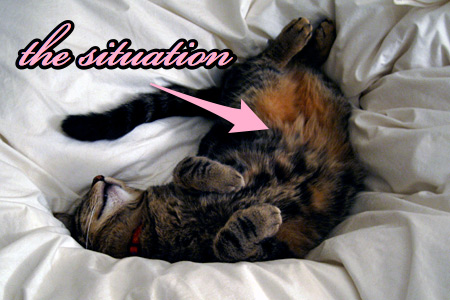 tabs-the-situation