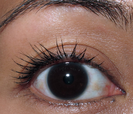 smashbox hyperlash review one layer of mascara